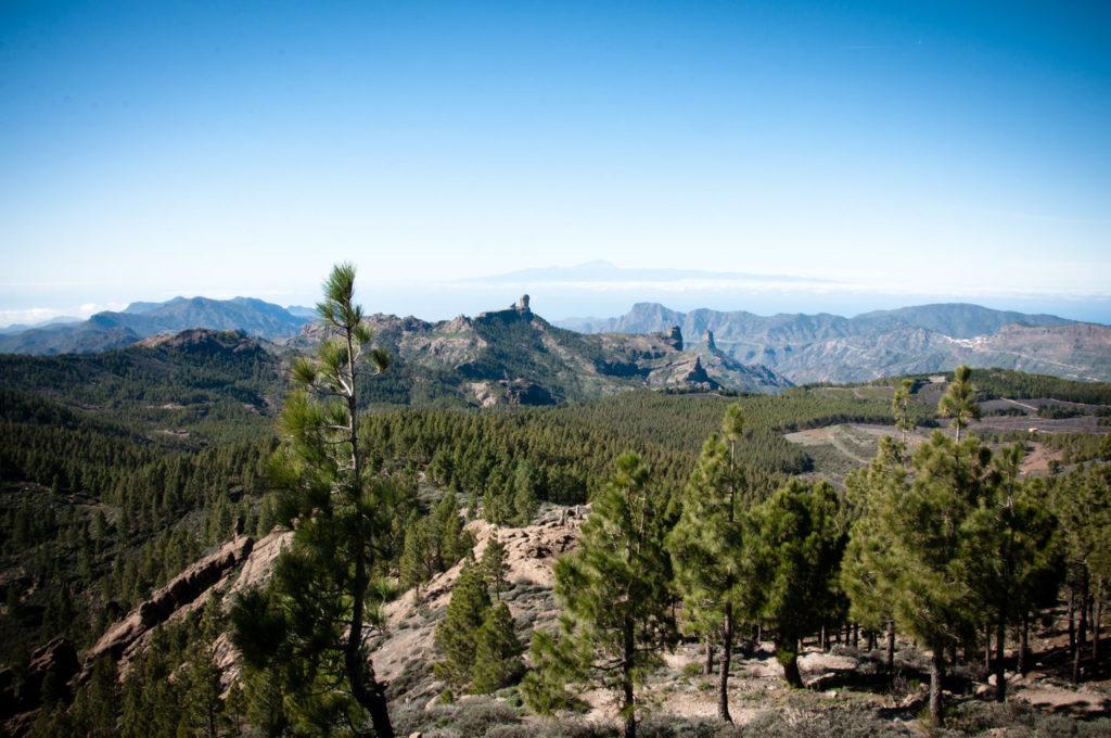 Landskapet oppe i fjellene på Gran Canaria er en opplevelse som man ikke bør gå glipp av.
